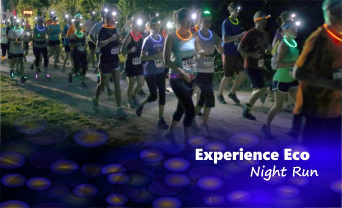 Experience Eco Night Run - Revista Correr